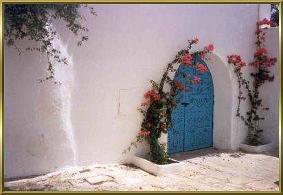 Typisches Tor in Sidi Bou Said